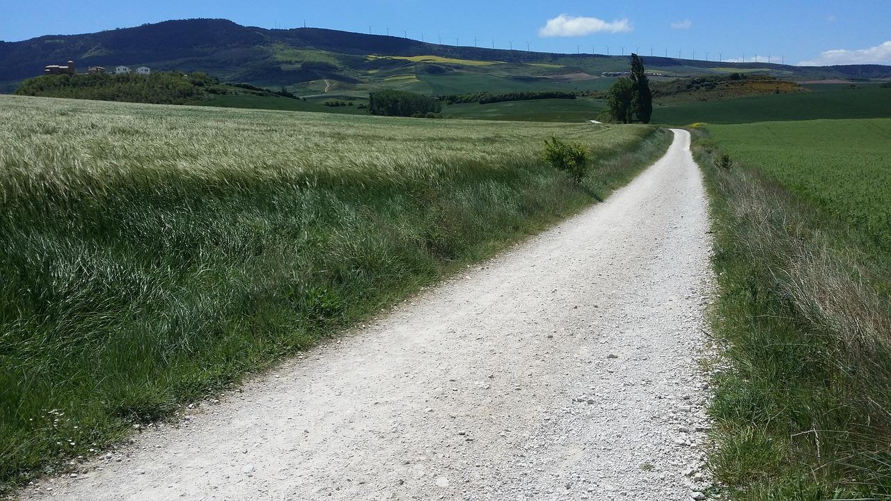 the-pilgrims-trail-2441192_1280