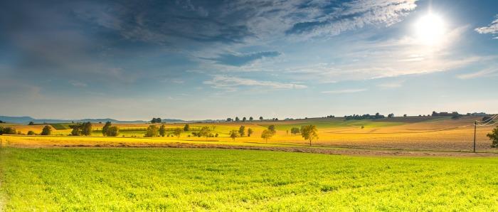 landscape-666927_1920